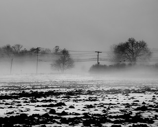 Winter Field and Power Lines