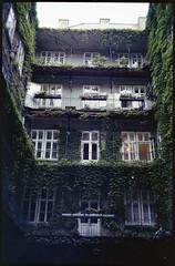 Inner patio (floripondiaa) Tags: fujica stx1 film 35mm florishootsfilm vienna austria