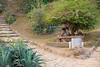 0F1A2937 (Liaqat Ali Vance) Tags: lawrence garden view google human man alone sitting lahore punjab pakistan trees life liaqat ali vance photography