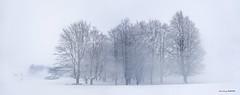 Egiriñao (Jabi Artaraz) Tags: jabiartaraz jartaraz zb euskoflickr nieve gorbea egiriñao elurra edurra negua invierno winter nature panorámica hayedo pagadia refugio igiriñao