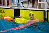 XXC_5295 (RawerPhotos) Tags: castres championnatdefrance sauvetage shortcourse eauplate sauveteursbéglais pool championships surf life saving