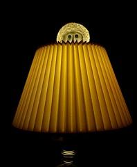 Genie Wearing Straw Hat Emerging From Lamp (ricko) Tags: lamp shade genie doll head makeawish