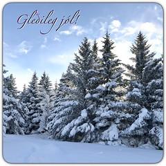 Merry Christmas (unnurol) Tags: outdoorcoldblue winterwonderlandwintertreesnow