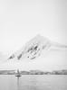 M1004941 (pechelman) Tags: 246 90mm leica antarctica elmaritm f28 whales zodiac