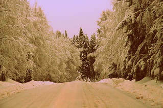 The wintry road.