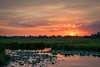 Sunset over a Pond with Waterlily's (mesocyclone70) Tags: sunset sky cloud clouds cloudscape skyscape sunrise color colorful pond water reflection reflections holland netherlands canal lily waterlily summer