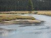130817-03 (2013-08-21) - 0069 (scoryell) Tags: california elk tuolumnemeadows tuolumneriver yosemitenationalpark