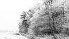 Winterwonderland II (Fred Veenkamp) Tags: black white bw zwart wit zw winter snow sneeuw