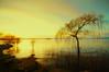 Tramonto sul lago (sirVictor59) Tags: lazio lagodibolsena landscape lago lake tramonto sunset sirvictor59 italy italia