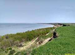 Берег Азова в Ростовской области.