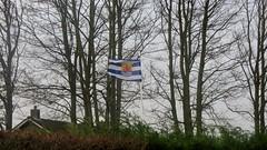 Zeeuwse vlag (Omroep Zeeland) Tags: zeeuwse vlag