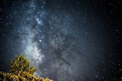A night to remember (amcatena) Tags: sky forest night tree stars portugal algarve starry