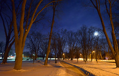 full moon rising (DeZ - light painter) Tags: royalcitypark night trees snow sky fullmoon guelphcanada hdr handheld 5000iso nikon nikond610 nikkor nikkor1424mmf28 nature dez