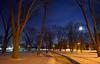 full moon rising (DeZ - photolores) Tags: royalcitypark night trees snow sky fullmoon guelphcanada hdr handheld 5000iso nikon nikond610 nikkor nikkor1424mmf28 nature dez