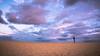Light hunter III (Ettore Trevisiol) Tags: ettore trevisiol nikon d7200 d300 sigma 17 50 28 nikkor 55 200 vr 10 20 fuerteventura spain island landscape seascape canary canarian corralejo natural park sunrise golden blue hour photographer seagull