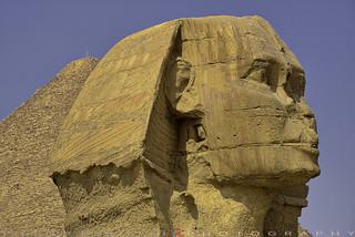 Sphinx temple