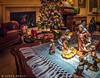 Day of Wonder (James Neeley) Tags: christmas stilllife jamesneeley