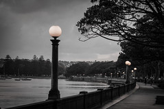 Rose Bay (MyEyeSoul) Tags: rose bay rosebay nsw sydney australia blackwhite bw promenade people scenery landscape urban suburb sydneyharbour