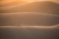 blowin' in the wind (Andy Kennelly) Tags: dunes wind sun abstract nude light sand sunrise death valley mesquite morning storm motion movement layers golden