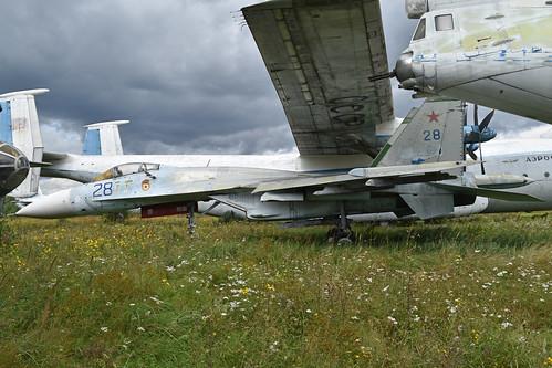 Sukhoi Su-27 '28 blue'