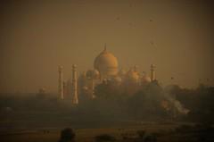 Power of Love - Taj Mahal (Deep'Blue / Laurent COLLET) Tags: taj tajmahal