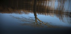 River Weaver Abstract (Colin Nicholson) Tags: weaver river abstract uk northwich england water reflections