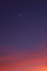 Sunset 11 21 17 014 (Az Skies Photography) Tags: canon eos 80d canoneos80d eos80d canon80d cloud clouds sky skycape red orange yellow gold golden salmon balck arizonasky arizonaskyline arizonaskyscape sun rio rico arizona az riorico rioricoaz november 21 2017 november212017 11212017 112117 skyline set sunset dusk twilight nightfall