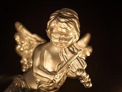 Angel by candlelight [explored] (Peter Branger) Tags: macromondays macro litbycandlelight angel bokeh