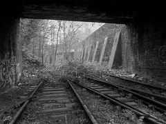 Blue Brick (Jason_Hood) Tags: disused abandoned railway railroad blackandwhite monochrome wednesbury