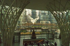 "Window Garden View Which Is  Looking Out Toward Oculus and WTC (nrhodesphotos(the_eye_of_the_moment)) Tags: dsc0699523001800 ""theeyeofthemoment21gmailcom"" ""wwwflickrcomphotostheeyeofthemoment"" brookfieldplace luminous glass roof metal panoramic art people indoors reflections shadows wintergarden westside oculus streetscene artistic perspective"
