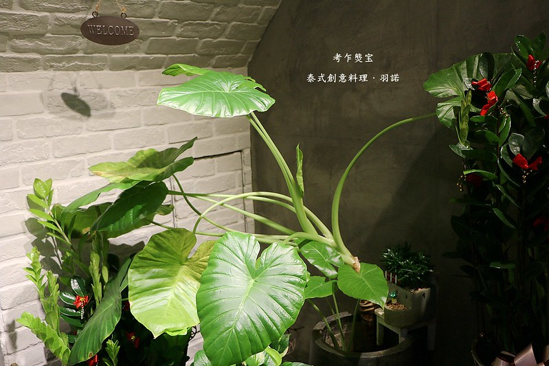 考乍熋宝泰式創意料理016