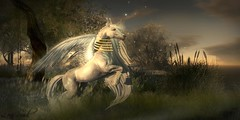 Live free ... (Leni Soul) Tags: sl secondlife marketplace blog shape lenisoul wordpress leni soul unicorn teegle fantasy mystical fae forest mysticalfaeforest