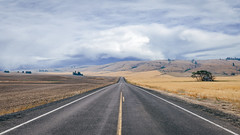 Drive (Pedalhead'71) Tags: douglascounty washington road drive deert