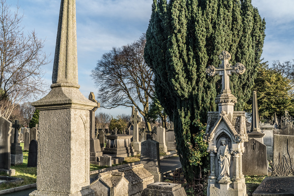 VISIT TO GLASNEVIN CEMETERY IN DUBLIN [FIRST SESSION OF 2018]-134922