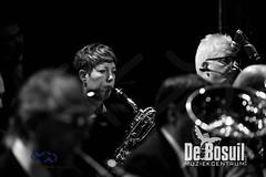 2017_01_07 Nieuwjaarsconcert St Antonius NJC_2918-Johan Horst-WEB