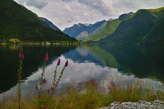 Sognefjorden u Balestrandu. (Pavel Zalesky) Tags: norway norge summer travel vacation