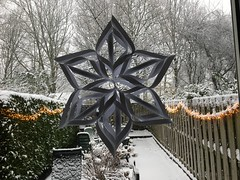 Star (Dimormar!) Tags: winter ster star paper papier white wit garden tuin