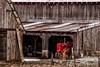 Old Red is ready (Thomas DeHoff) Tags: farmall m red tractor farm barn iowa sony a700