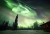 the Northern Sky (yan08865) Tags: forest road alaska dalton fairbanks aurora borealis night nightphotography nature sky grass tree landscape winter pavlis earth space depth above northern light lights soe green red pictures supershot