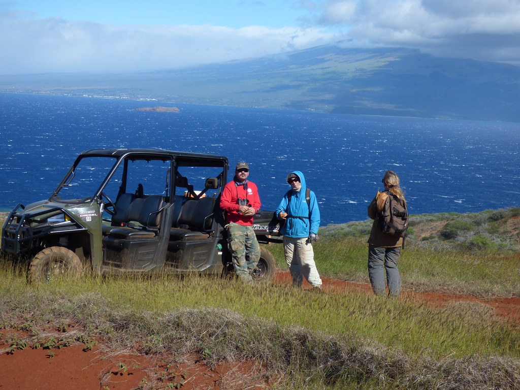 Kahoolawe Christmas Bird Count - 2017