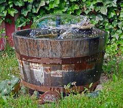 Water (L2ZBNS3PRVL4L5LT2UMSDAYGLV) Tags: fountain frozenmoment shortshutterspeed