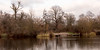 Wintry Day at the Pond (armct) Tags: skyline colours warm england unitedkingdom london cold calm serene park common garden wake breeze reflection duck landscape afternoon winter landing pond lake shoreline
