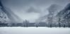 Königssee im Winter (christianseitz) Tags: landschaft schnee schneefall zeitpunkt winter königssee schönauamkönigssee deutschland sanktbartholomä ufer see seeufer baum nebel bayern