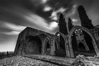 loneliness at the abbey...................