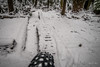 7th in the snow (kendyck1) Tags: fromme northshore northvancouver whitechristmas fatbike