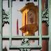 The Chinese lantern