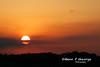 C130E-SUNSET-2-9-10-RAF-MILDENHALL (Benn P George Photography) Tags: rafmildenhall 2910 bennpgeorgephotography mc130p 660215 mc130h 870023 sunsets c130e 621851 harvest 74747uf atlasair n498mc peacockbutterfly