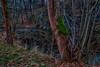 IMG_4811_HDR-2 (André Leonhardt) Tags: autumn architektur beauty building bäume colors canon canonphotography canon70d captureslandscape capturesnature captutesnature captureswater deutschland erzgebirge eos70d germany hdr heaven himmel herbst landschaft landscape landscapephotography landscapecaptures lauter natur nature naturephotography oremountains photography langzeitbelichtung langzeitbelichtet longexposure wasser water