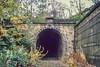 Thurgoland Up Tunnel Oct 1990 (Mr Bushy) Tags: mslr manchestersheffieldlincolnshirerailway gcr greatcentralrailway railways br britishrailways er easternregion 1990 woodhead woodheadroute barnsley southyorkshire yorkshire england upperdonvalley