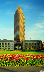 Tulips and Tower (Thom Sheridan) Tags: thomsheridan cleveland old vintage film negative downtown city 1999